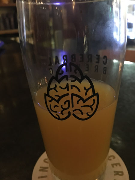 Cerebral Brewing, Denver